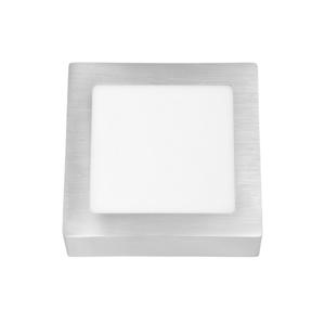 Ecolite LED Stropní svítidlo RAFA LED/12W/230V