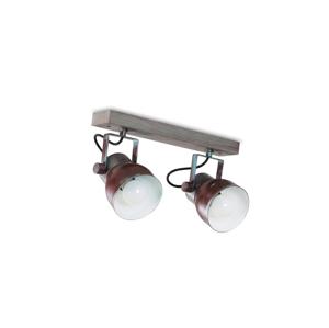 Light4home Stropní bodové svítidlo VIANA 2xE27/60W/230V