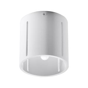 Sollux Stropní svítidlo INEZ 1xG9/40W/230V bílá